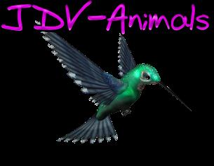 JDV-Animals