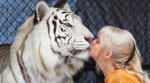 Essential Facts about the Care of Exotic Animals