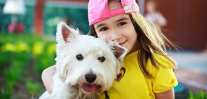 Keep Your Dog Happy and Healthy With Products and Services From an Online Pet Shop