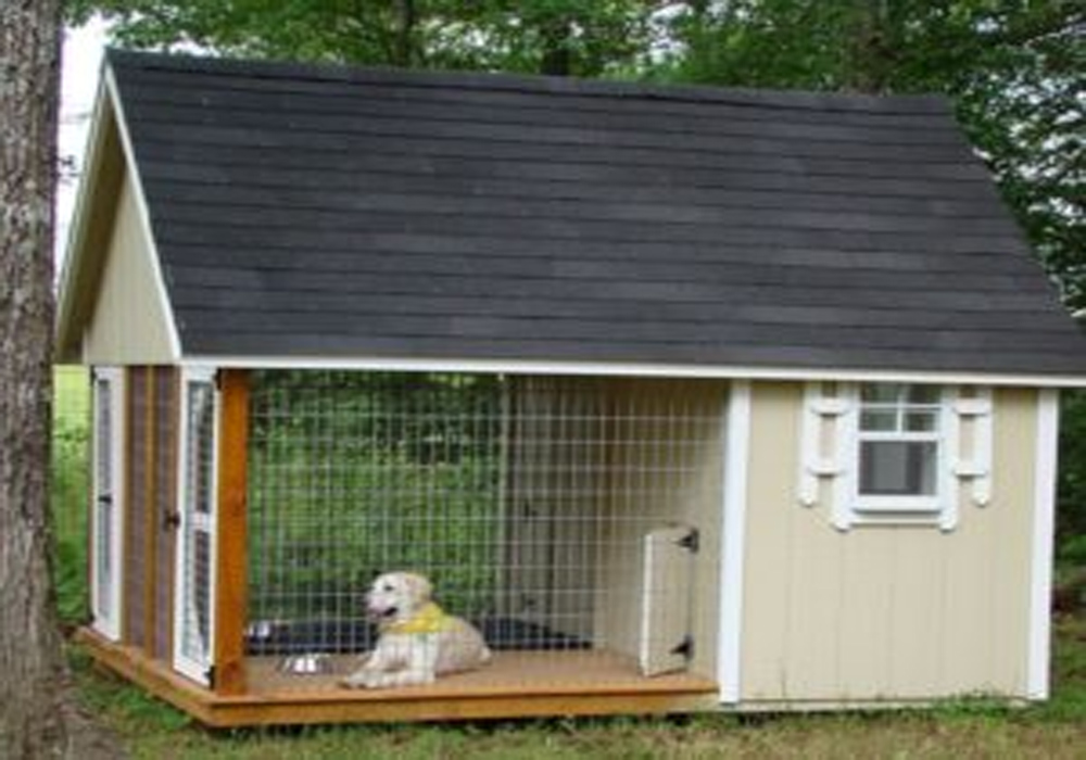 Pet Cages – A Vital Requirement to ensure Safety